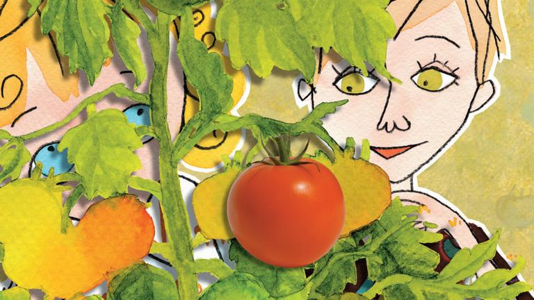 D. Tóth Kriszta: Lolamesék - Paracsidom-kertészet