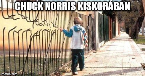 Chuck Norris már látta Columbo feleségét - 75 éves a pörgőrúgás nagymestere