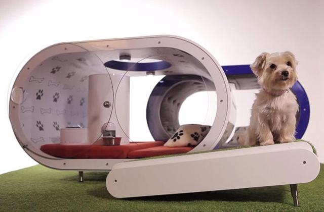 Ez a világ legpuccosabb kutyaháza - fotók