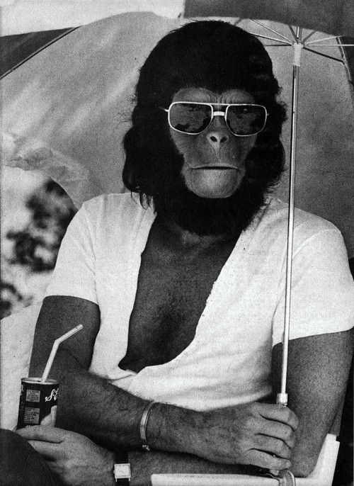 Üdítőt szürcsölő majom az 1967-es Majmok bolygója forgatásán