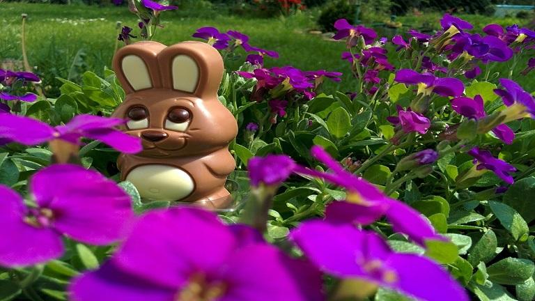 Milyen csokit kapjon a gyerek Húsvétra?
