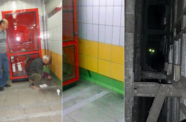 Öt év után szabadították ki a befalazott macskát