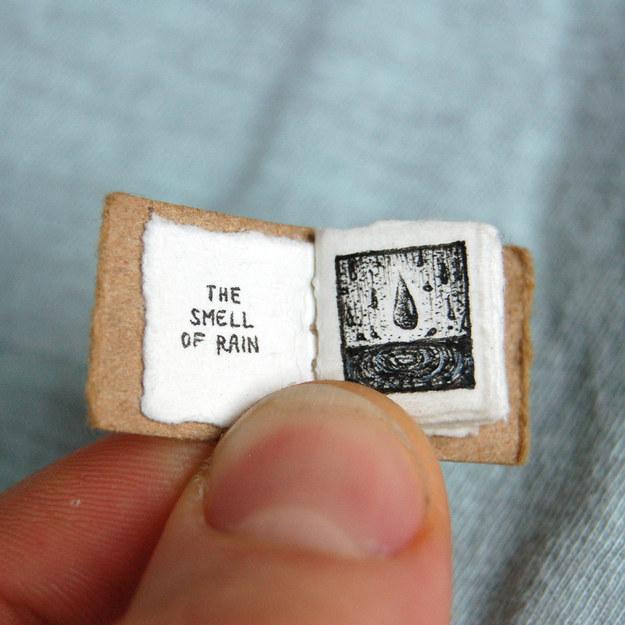 Kicsi a könyv, de tele van vidámsággal