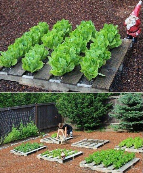 15 fantasztikus ötlet a kertbe