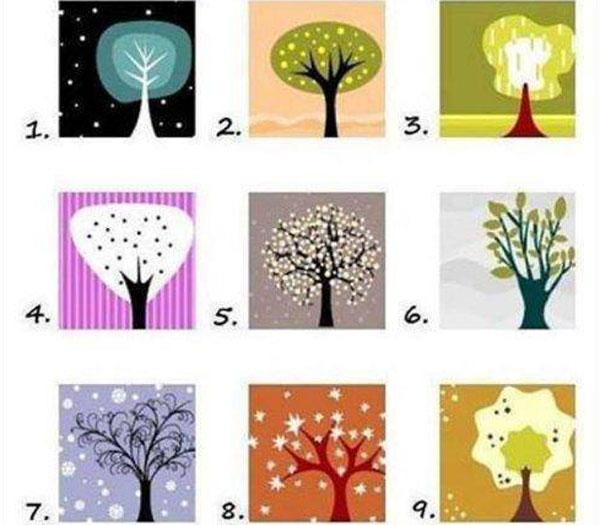 A nagy fa-teszt: melyik vagy te?
