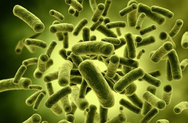 Tények az immunrendszerről - megerősít, ami nem betegít meg?
