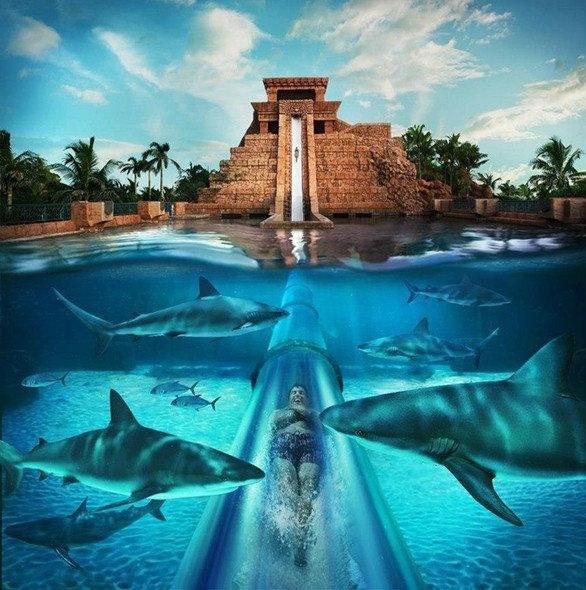 15 elképesztő medence, amit imádni fognak a gyerekek