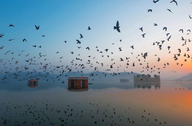 Fotó: Ravikanth Kurma