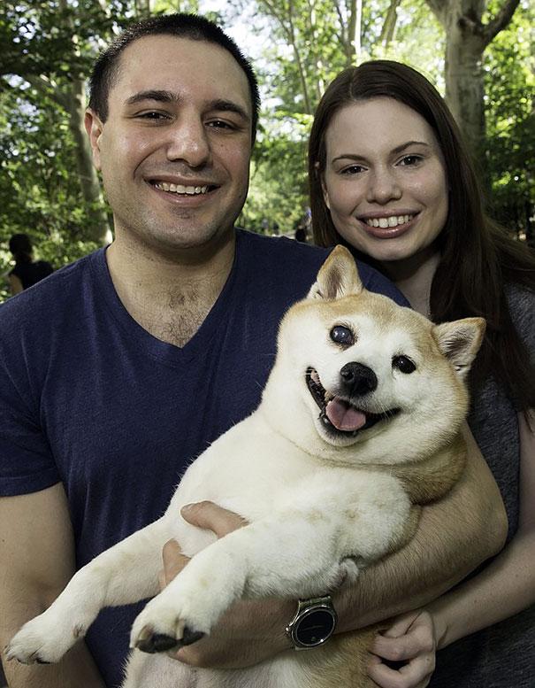 Ez a kutya soha nem hagyja abba mosolygást - fotók