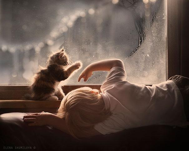 20 elképesztően aranyos macskás és babás fotó
