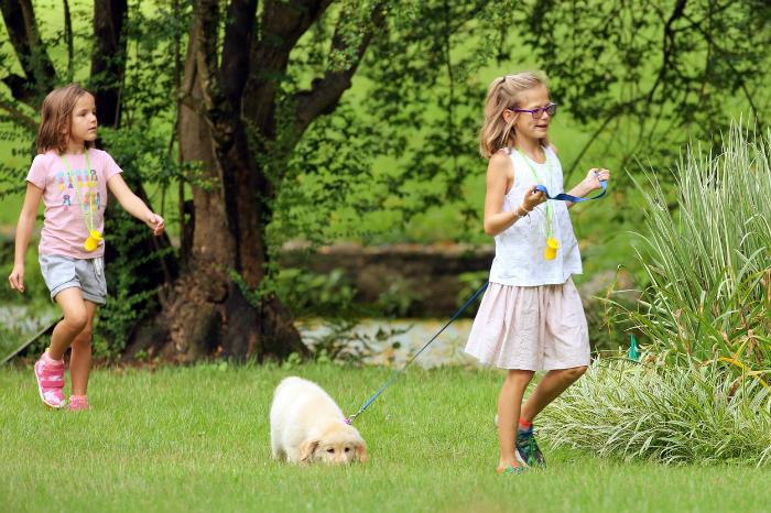 Tökéletes család: ilyen boldognak is rég láttad Ben Afflecket és Jennifer Garnert