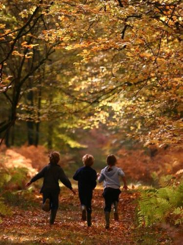 Minden, amit az őszi szünetről tudni érdemes
