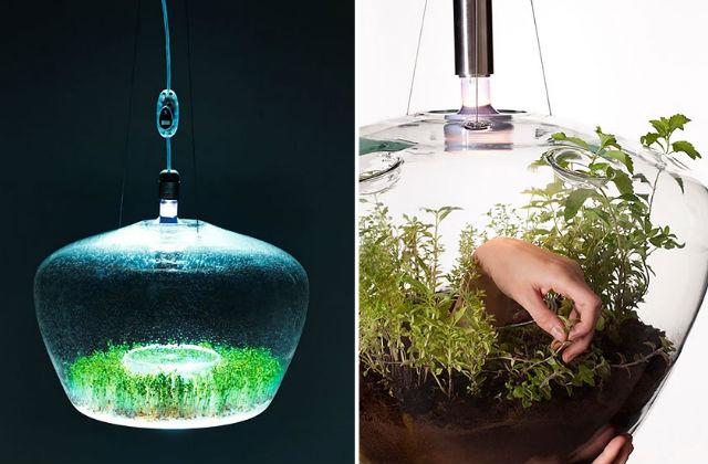 2 in 1 : virágcserép&lámpa
