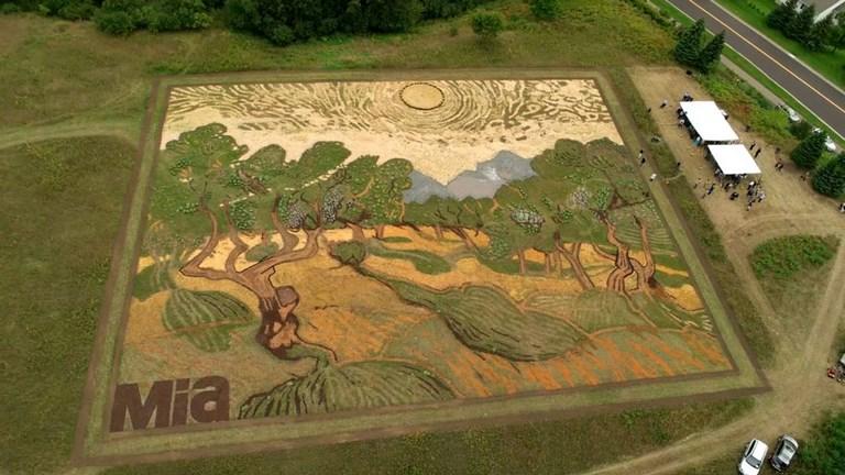 Van Gogh festmény egy 1,2 hektáros földbirtokon