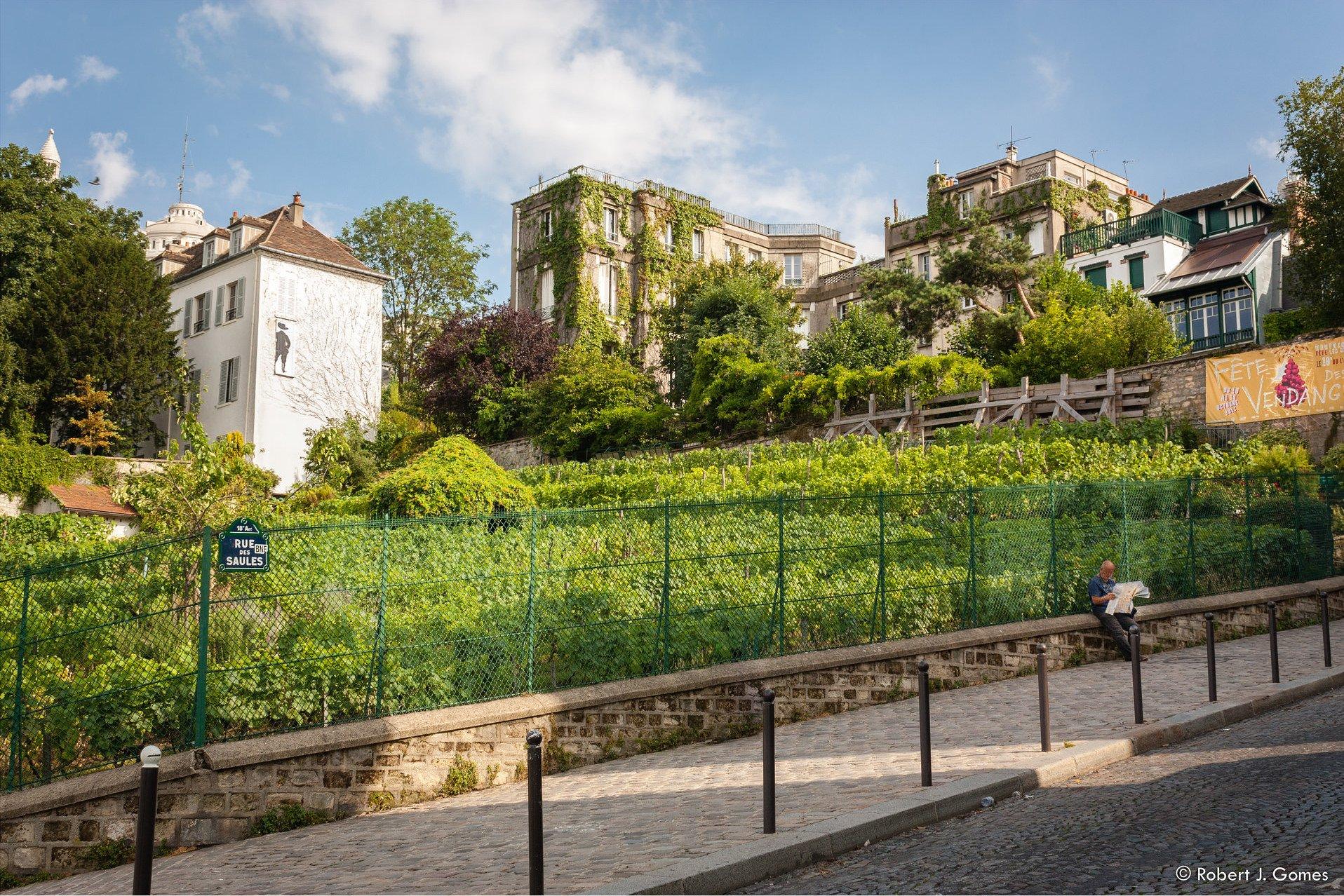 Eladó egy szőlőbirtokra néző ház Párizs szívében