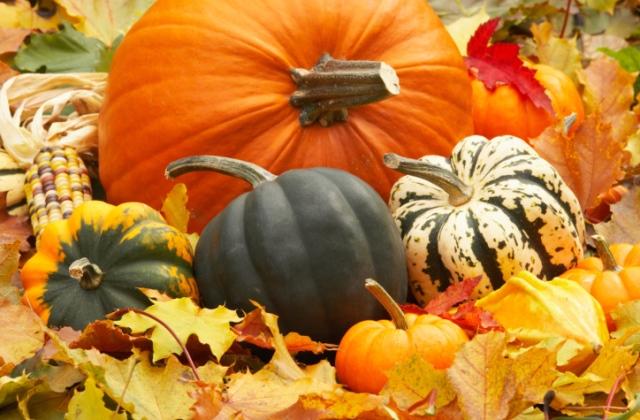 7 szuper program október első hétvégéjére