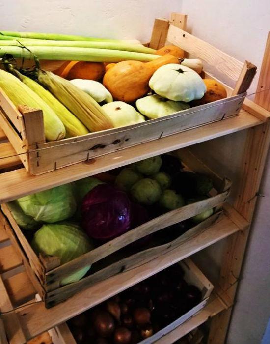 Vegyszermentes zöldségek a bolt kínálatában Fotó: noPack/Facebook