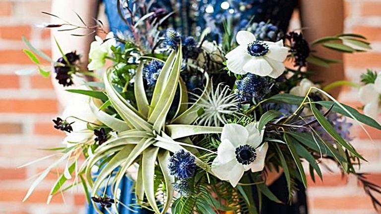 Tillandsia – a modern esküvők virága
