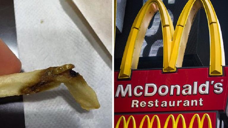 Undorító lárvát találtak a McDonald's sült krumplijában
