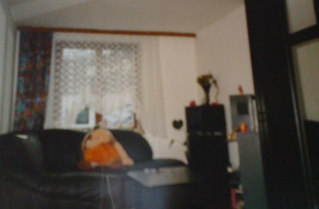 Éva régi albérletének emlékét, egy régiről megmaradt fotó őrzi