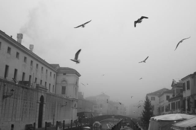 Ha itt a tél, irány Velence!