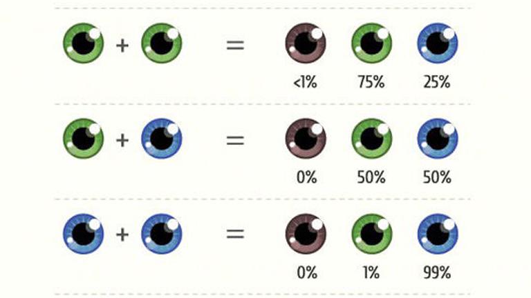 Szeretnéd tudni, milyen lesz a gyereked szeme? Megmondjuk!