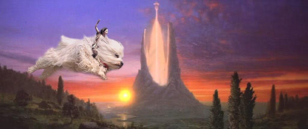 Cuki kutyus lett a Photoshop áldozata