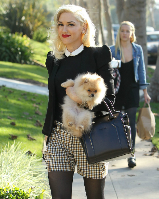 Gwen Stefani szült, míg férje a dadával szexelt