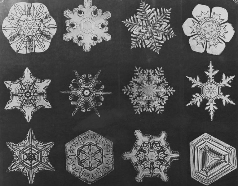 12 különböző alakú hókristály mikroszkóp alatt