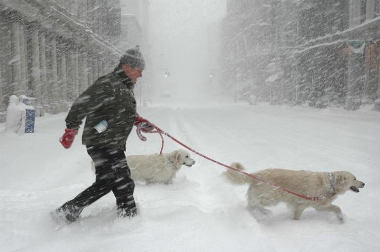 Hóvihar New Yorkban