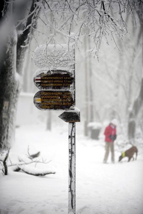Fotó: MTI/Mihádák Zoltán
