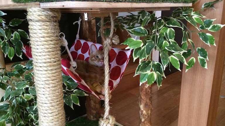 A csináld magad cicaház a legmenőbb hely, amit macska kívánhat