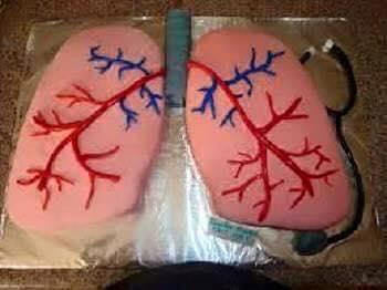 Brutál jó torták, amiket csak az egészségügyesek értékelnek