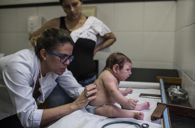 Zika-vírus: globális egészségügyi vészhelyzetet és szükségállapotot hirdettek