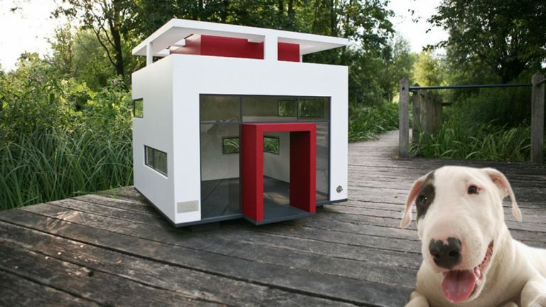 Egy szép kis kutyaházban szívesen laknak a kutyák odakint
