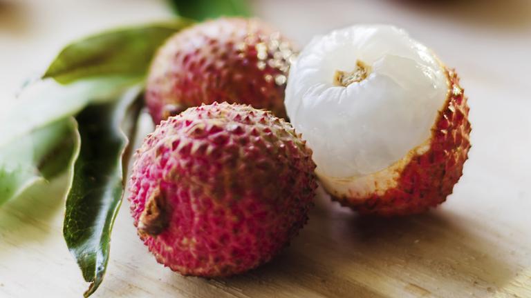 Mit érdemes tudni a Saccharomyces boulardii nevű élesztőgombáról?