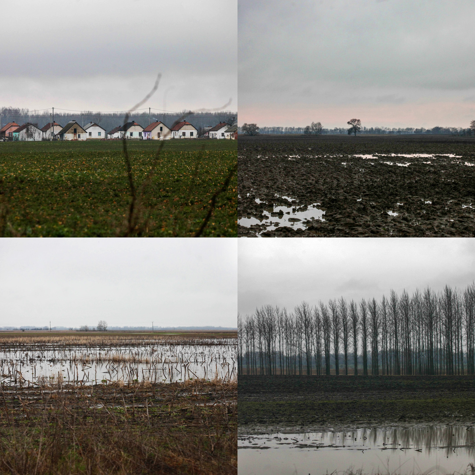 Éhezés és nyomor - Tiszaburán jártunk az Adománytaxival