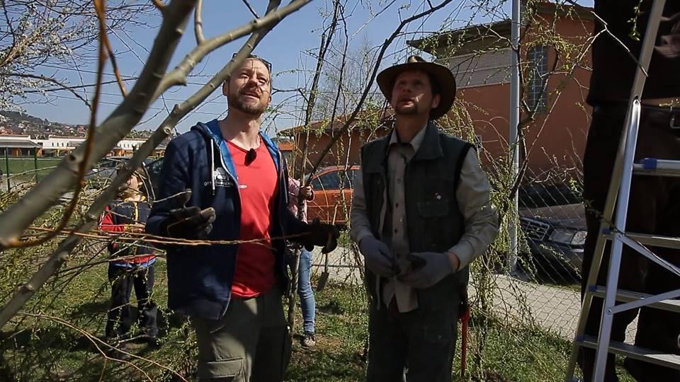 5 dolog, amit mindenképp csinálj meg tavasszal a kertedben! – McMenemy Márk interjú