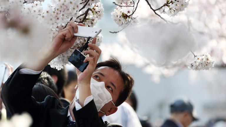 Ez a japán férfi nem bántja a fákat
