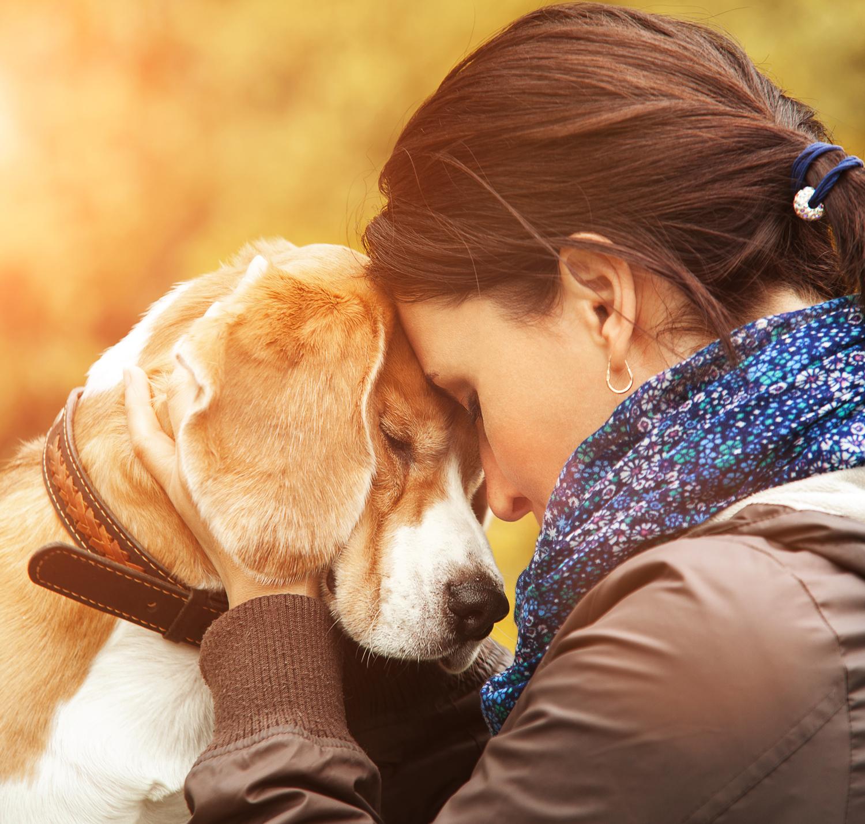"""""""Abszurd, hogy a kutyámat úgy gyászolom, ahogy még soha, egyetlen embert se"""