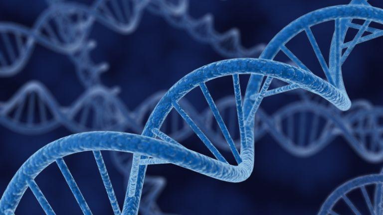 Egyesek DNS-e többet tud, mint az átlagé