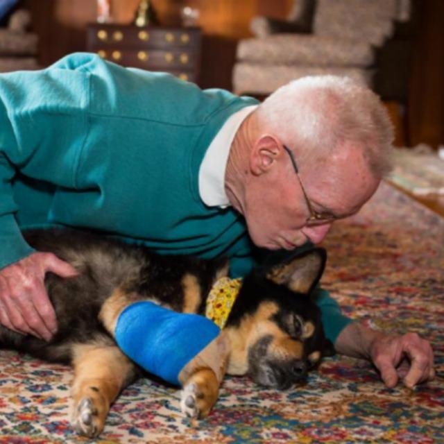 Vak és rákos kutyát fogadott örökbe az önzetlen férfi - megható fotók