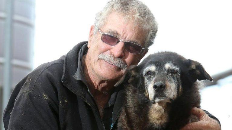 Maggie és a gazdája, Brian McLaren