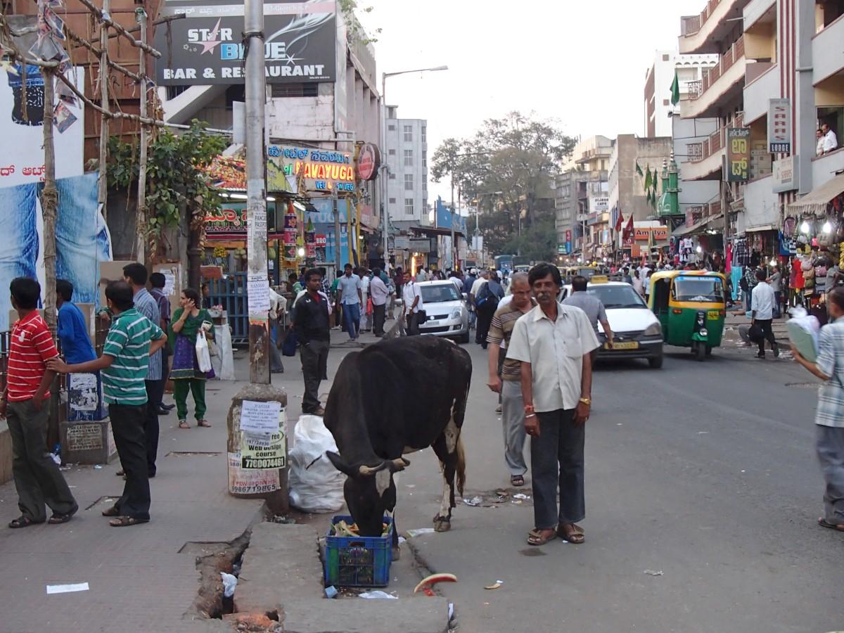 Bangalore, India (2013)