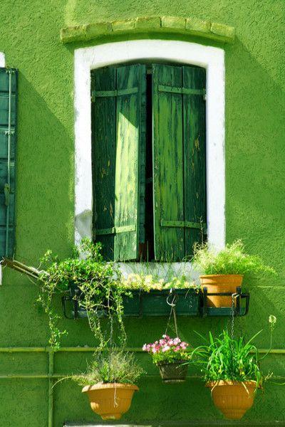 Ha nem szeretnél saját kezűleg zöld ajtódekorációt készíteni, akkor egy-egy bokor vagy tuja is feldobja a bejáratot, nemcsak az ablakokat.
