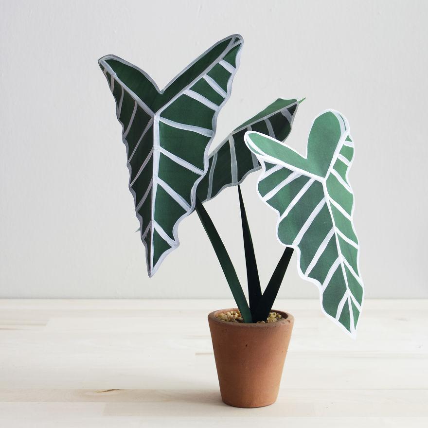 Csodás papírnövények csapnivaló virággondozóknak
