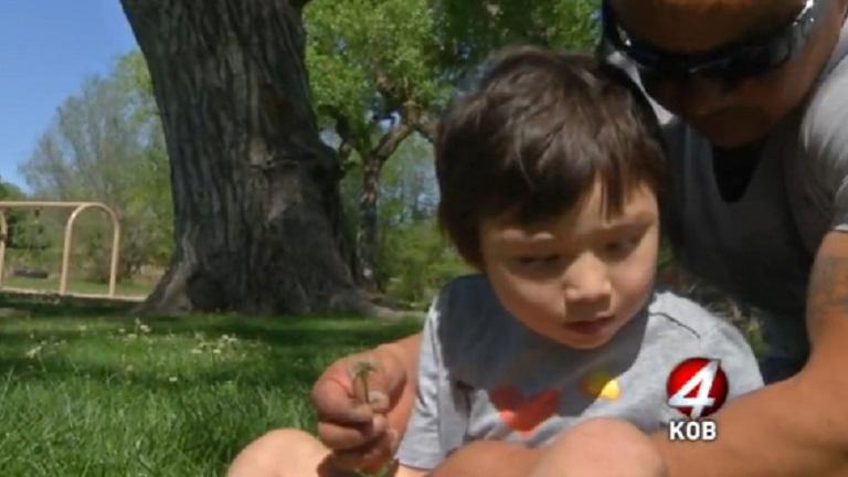 Orvosi marihuánától lett tünetmentes a súlyosan epilepsziás kisfiú