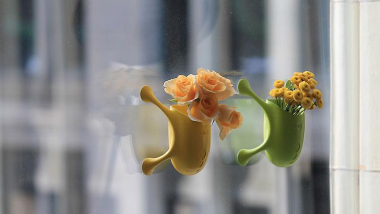 Virágoskert az ablaküvegen - itt vannak a tapadókorongos virágcserepek