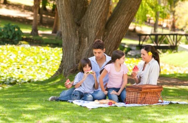 Így védd a természet békéjét - amit minden kiránduló családnak tudni kell