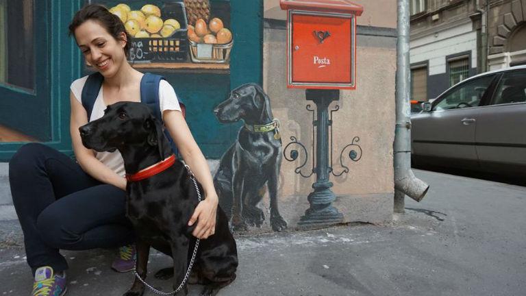 Szívmelengető történet: a tűzfalról vigyázza gazdája minden lépését a magyar kutya